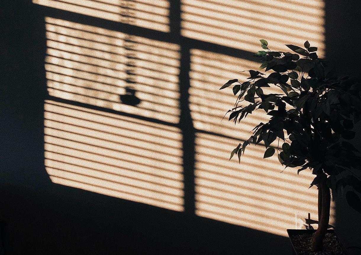 Through the window: Into the sun