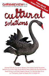 Cultural Solutions: Notes from the Front